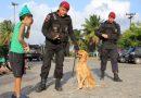 Polícia Militar da Paraíba recebe homenagens e visitas de crianças em alusão ao Dia do Soldado