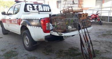 Polícia Militar apreende 13 aves silvestres e quatro armas usadas em caça na Paraíba